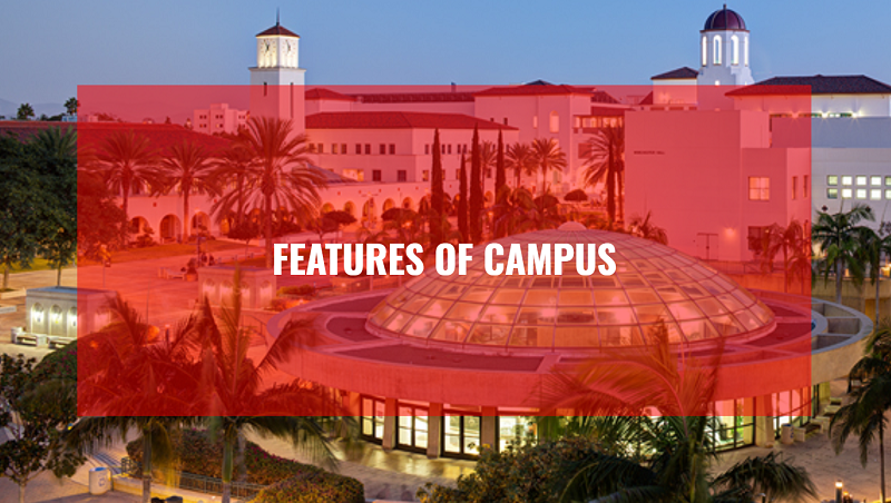 Features of campus slide