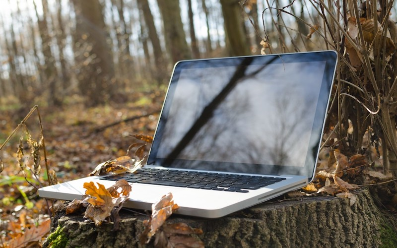 laptop in the woods